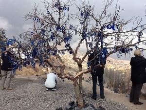 Evil Eye Tree, Cappadocia